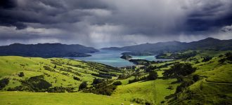 New Zealand's hidden gem : Shahir Daud