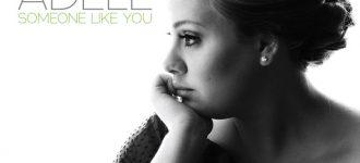 New Girl on the Blog - Perez Hilton video contest