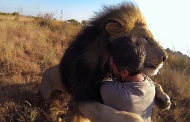 Melissa-bachman-vs-kevin-richardson-lions