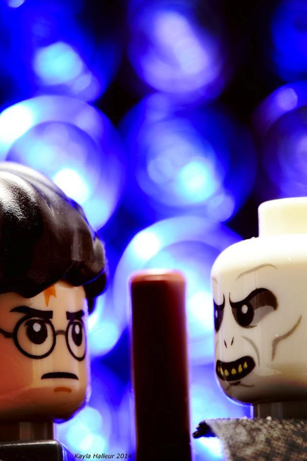 Lego-poster-Harry-potter
