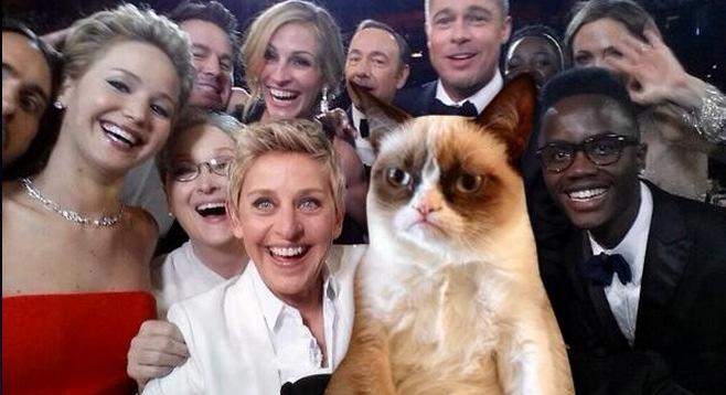 Oscar-cat-selfie