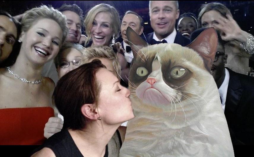 Oscars-selfie-parody-cat