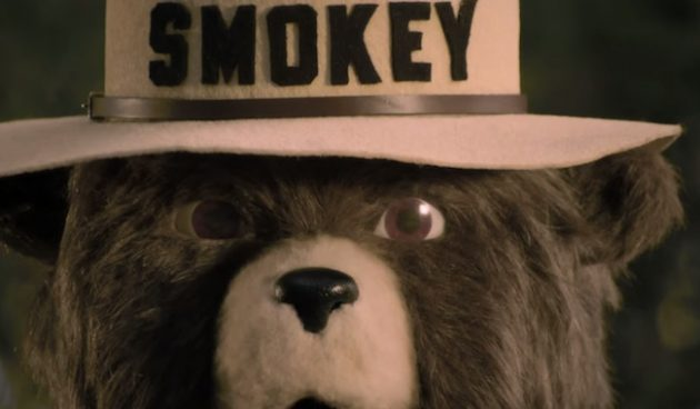 Smokey-bear-disney-psa